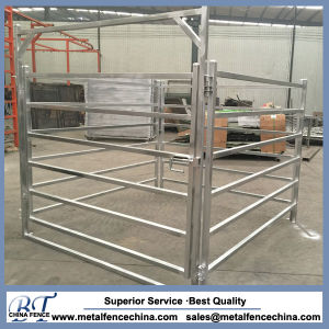 Oval Rail Horse Cattle Yard Panel Gates pictures & photos