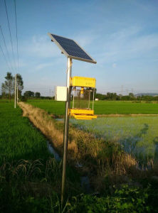 Solar Insecticidal Lights / Solar Insecticidal Lamp for Farm pictures & photos