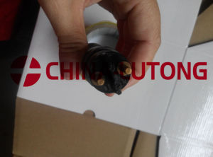 Bosch Diesel Fuel Injector-Common Rail Injector 0 445 120 020 pictures & photos