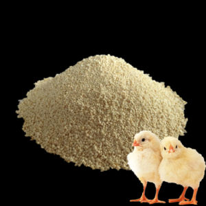 Reliant Supplier of L-Lysine HCl 98.5% Feed Grade pictures & photos