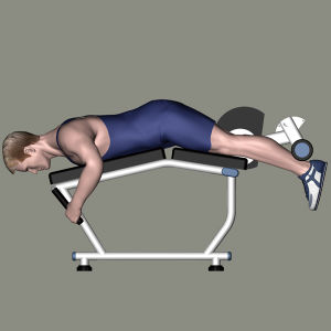 Gym Equipment Fitness Equipment for Prone Leg Curl (M2-1006) pictures & photos
