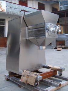 Swing Granulator/Granule Making Machine pictures & photos