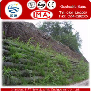 Geotextile Bag for Ecological Envriment 45cm*80cm USD0.55/Piece for Retaining Wall Engineering pictures & photos