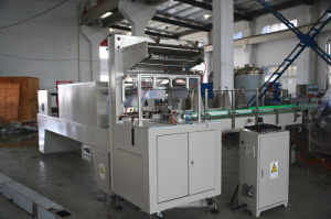 Stable Structure Bottles Wrap Around Packing Machine pictures & photos