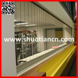 Auto Roll-up Window Roller Grill (ST-003) pictures & photos