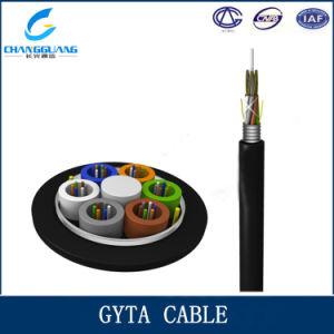 G652D Fiber Cable PE Jacket Free Samples GYTA/S pictures & photos