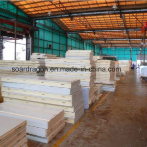 Insulation Refrigerated Warehouse Cold Room for Logistics pictures & photos