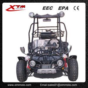 2seats 150cc Hammerhead Gas Dune Buggy off Road Go Kart