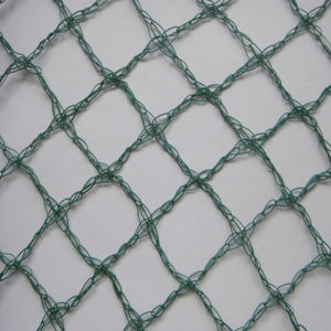 China Wholesale Price Bird Netting for Fruit Trees pictures & photos