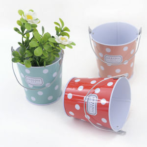 Small Tin Bucket Box with Custom Printing pictures & photos
