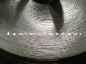 Graphite Tape for Swg Spiral Wound Gasket pictures & photos