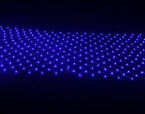 Outdoor Blue LED Christmas Net Lights for Holiday Decoration pictures & photos