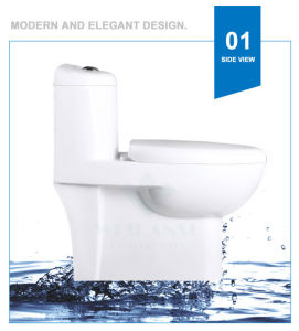 Weidansi Ceramic Siphonic S-Trap One Piece Toilet (WDS-T6124) pictures & photos