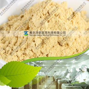 Manufacturer 80~200 Mesh Dehydrated Ginger Powder pictures & photos