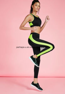 High Quality Quickly Dry Women Running Shorts Yoga Suit pictures & photos