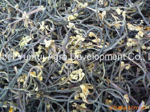 Yunnan Edible Wild Dried Bracken