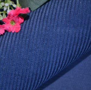 Cotton Corduroy Fabric pictures & photos
