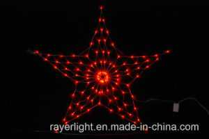 Christmas Outdoor LED Net Light Holiday Decoration pictures & photos