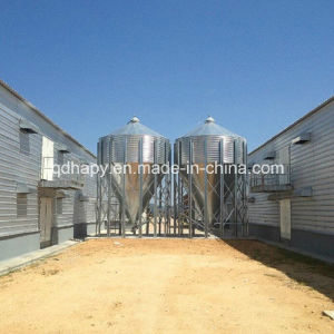 Prefabricated Steel Frame Double-Floor Chicken House with Full Set Equipment pictures & photos