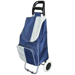 Wholesale Fold up Trolley Bag (SP-546) pictures & photos
