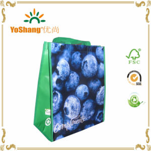 Reusable Customized Designs Full Printing Lamination PP Non Woven Supermarket Shopping Bag pictures & photos