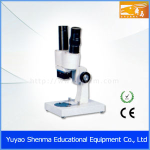 Stereo Microscope (DSC_4732)