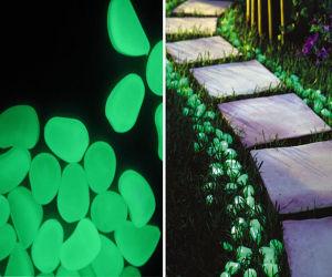 Photoluminescent Powder/Photoluminescent Pigment/Yellow-Green Glow in Dark Pigment pictures & photos