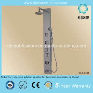 Luxury Bathroom PVC Jets Massage Shower Panel (BLS-3900) pictures & photos
