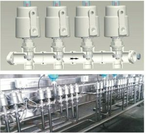 Pneumatic Manifold Flang Eends Valve pictures & photos