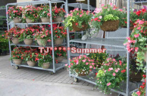 Metal Flowers Cart for Greenhouse pictures & photos
