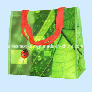 Full Colors Printed Custom 120GSM Plastic BOPP Laminated PP Woven Bag pictures & photos