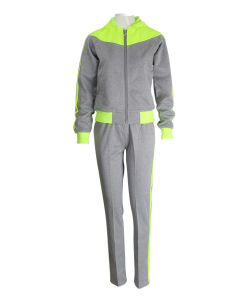 Premium Quality Heavyweight Cotton Spandex PRO-Fit Tech Hoodie Gym Fitness Tracksuit pictures & photos