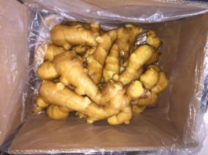 for Global Market/Air-Dried Ginger in Carton (200g-250g) pictures & photos
