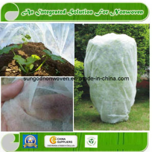 Landscape Nonwoven Fabric pictures & photos