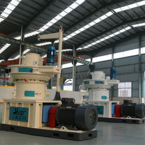 Biomass Fuel Vertical Ring Die Wood Sawdust Pellet Making Machine pictures & photos