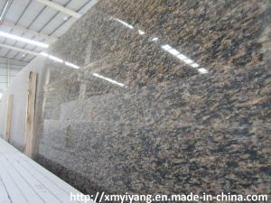 Camel Brown Granite Slabs, Stone Slab pictures & photos