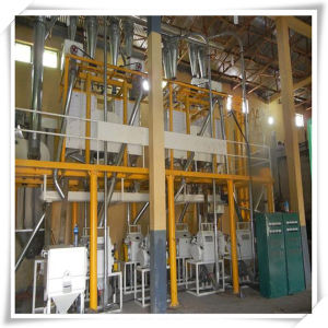 Rapeseed Oil Refinery Machine (30t/D) Made in China for Sale pictures & photos