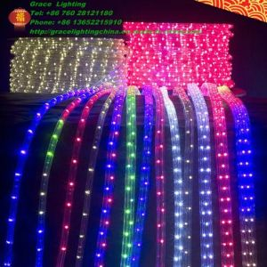 Jump and Scroll LED Light 5050 LED Strip (G-SMD5050-60-220V-JNS) pictures & photos
