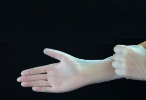 Small MOQ Powder Free Disposable PVC Gloves for Food Electronics Use pictures & photos