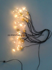 Fairy Decorative LED Bulb with Copper Wire Inside for Festivals pictures & photos