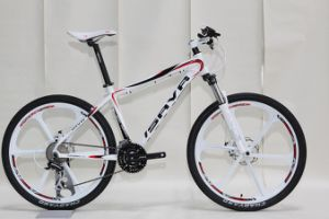 26′′ Alloy Organic Wheel Mountain Bicycle/MTB Bike (SH-AMTB03) pictures & photos
