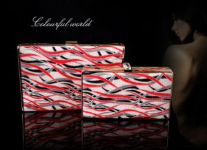 2014 New Fashional Hand Clutch Evening Bag (XW002) pictures & photos