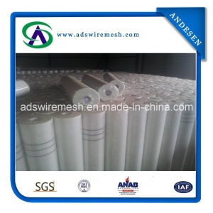 Fiberglass Window Screen Factory pictures & photos
