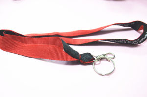Factory Double Face Print Neck Lanyard pictures & photos