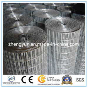 2016 Hot Dipped Galvanized Hardware Cloth / Galvanized Welded Wire Mesh pictures & photos
