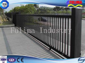 Galvanized&PVC Coated Welded Steel Fence/Iron Fence (FLM-FN-004) pictures & photos