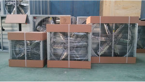 Ventilation Cooling Equipment for Henhouse and Dairy Farm pictures & photos