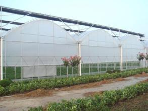 Quality Eeconomic Great Benefit PC Sheet Greenhouse for Planting with Factory Price
