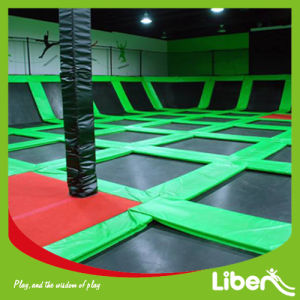 2015 Latest Professional Indoor Bungee Trampoline with Dodgeball pictures & photos