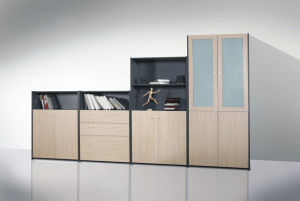 Movable Filing Cabinet Storage Shelf (D14)